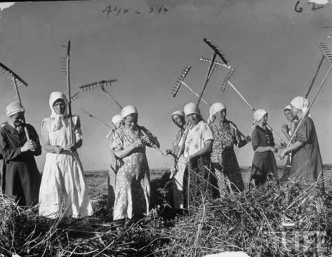 Collectivisme-tijdens-Stalin-09121_20181214-113359_1